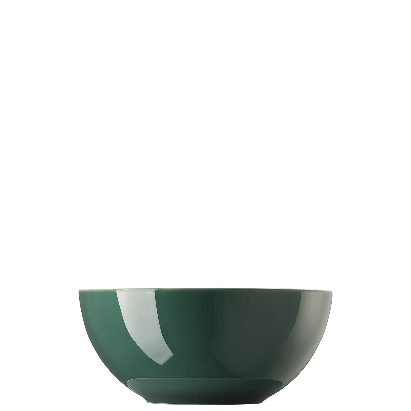Schüssel 21 cm Sunny Day Herbal Green Thomas Porzellan