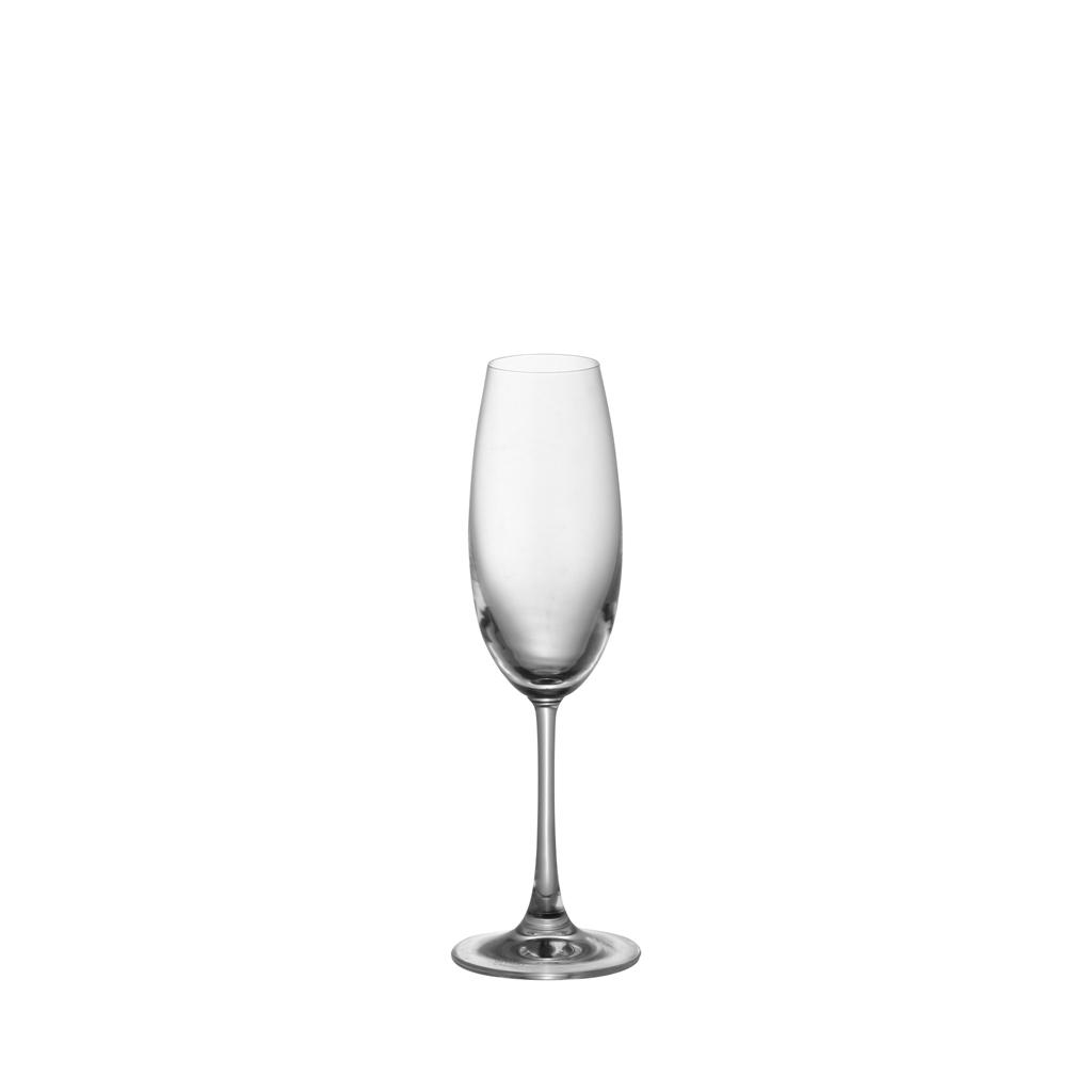 Champagner DiVino Glatt Thomas Porzellan