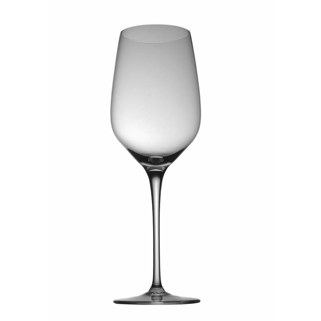 Junger Weißwein Fuga Glatt Rosenthal Studio Line